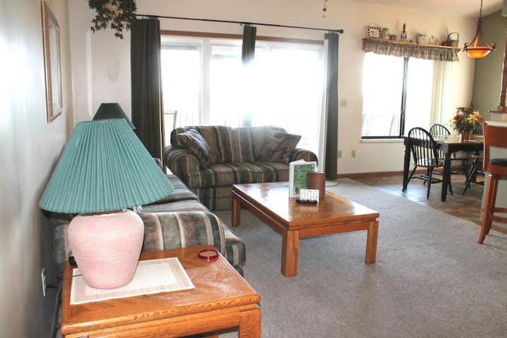 Beautiful Lake View!! 2 bed 2 bath Condo- Large Deck- Close to SDC! Pool
