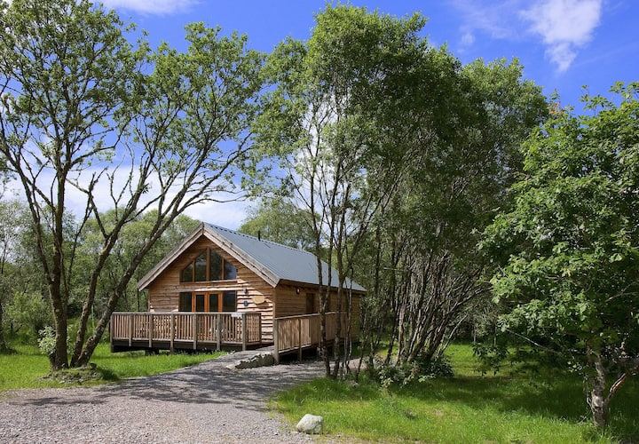 Silver Birch Log Cabin