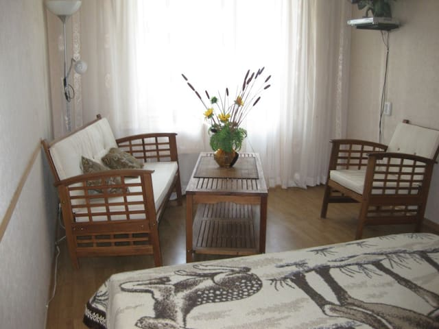 Cosy apartment in Kiev 3 min metro - Kiev - Apartment