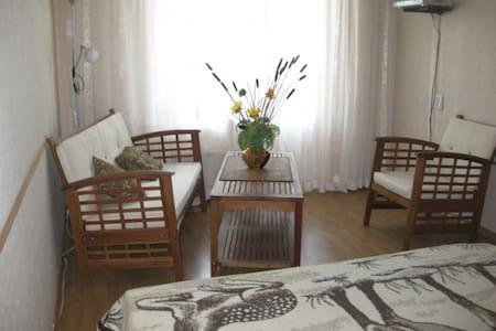 Cosy apartment in Kiev 3 min metro - Kiev - Apartment