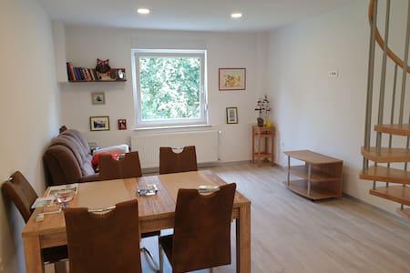 Cozy peaceful apartment in Trojane