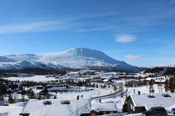 Ski in/out apartment at Gaustablikk - Rjukan - アパート