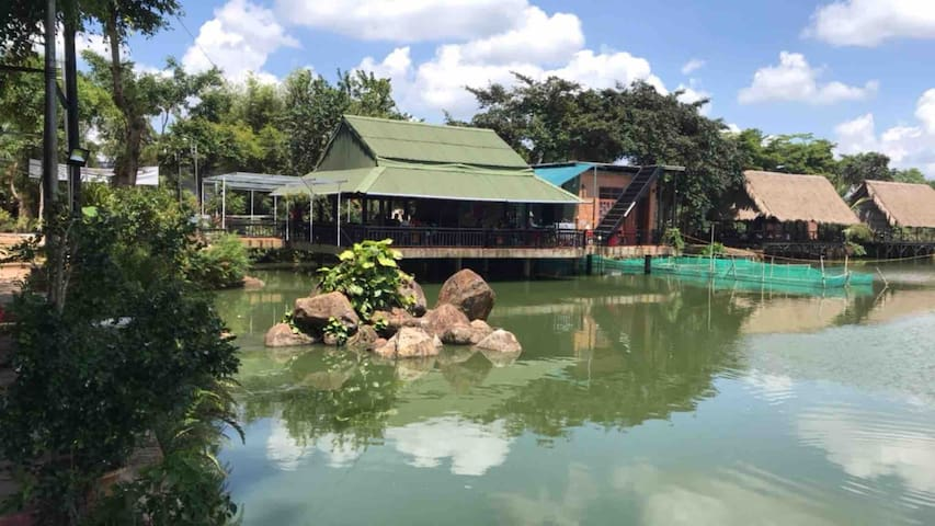 Nguyen Thanh's Orchid Pond Homestay