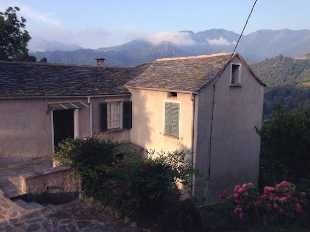 TRADITIONAL TERRACED GARDEN HOUSE - Poggio-Mezzana