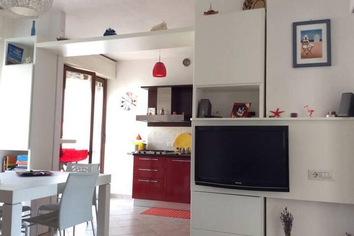 Grazioso e luminoso appartamento - Pisa - Appartement