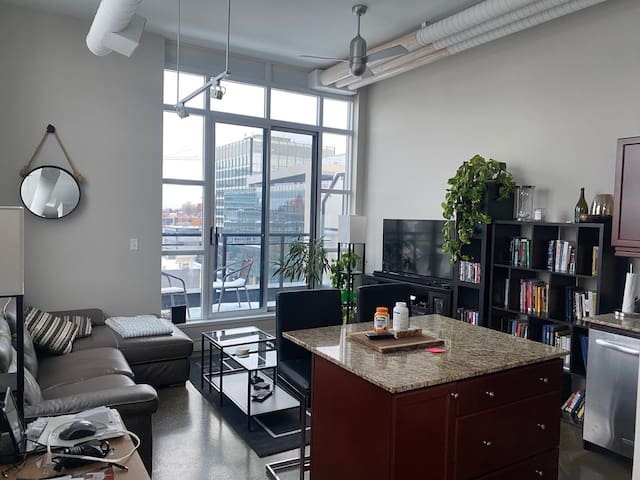 Unique downtown Loft with exceptional views