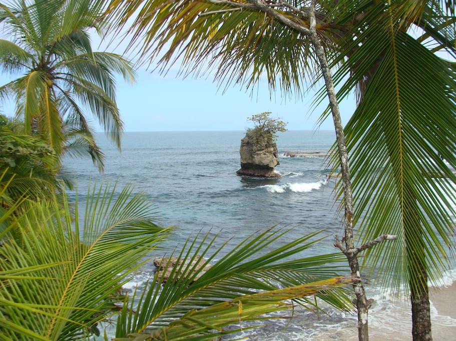 Walking on Manzanillo Beach