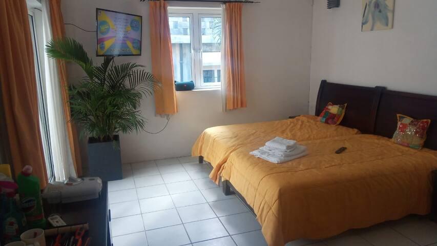 Gästezimmer mit Bad und Balkon in Flic en Flac II