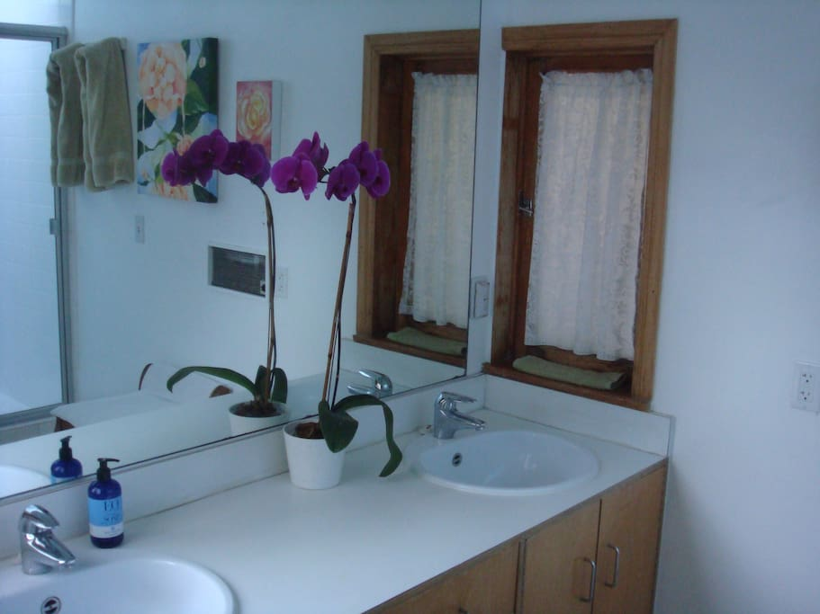 Large private bath with double sinks, shower with skylight