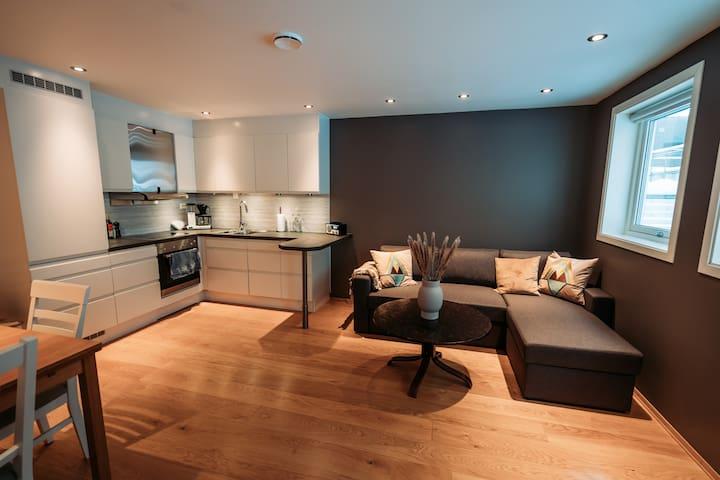 Cozy apartment in the heart of Tromsø!