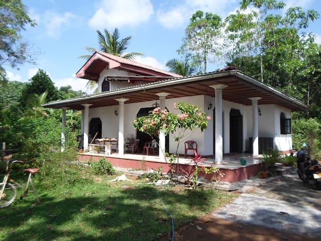 Bungalow - Colombo
