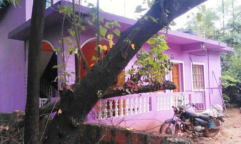 The little purple house - Arambol - House