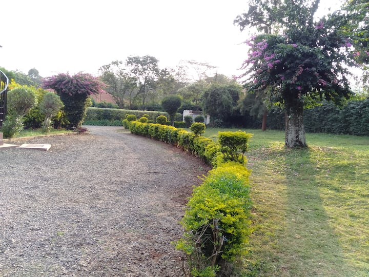 chill-mode haven, freshness and tranquility zone