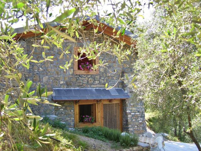 Cute cottage in the olive grove