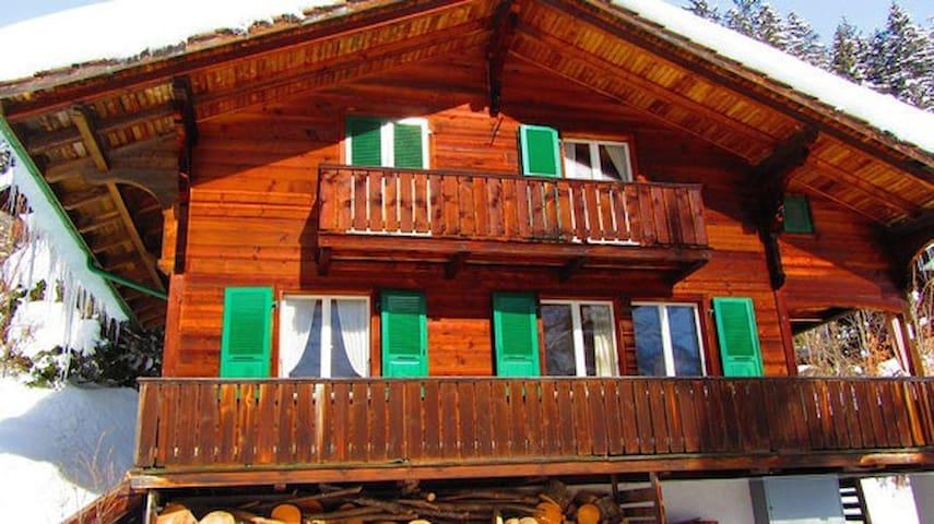 Chalet Oben Hegen - Grindelwald - Rumah