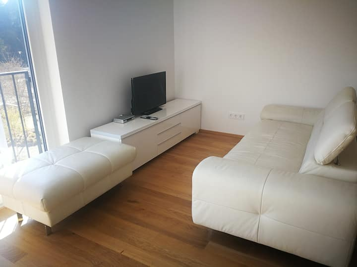 Top furnished 1/1.5 room apartment city center