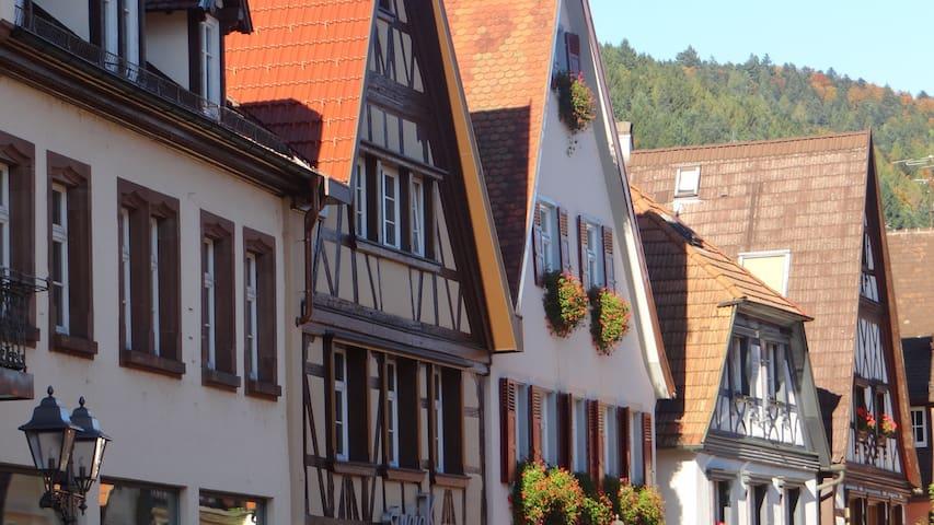 Wohnung mit Garten - Haslach im Kinzigtal - Apartemen