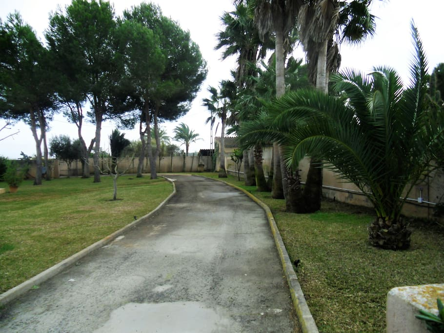 jardin grande y espacioso
