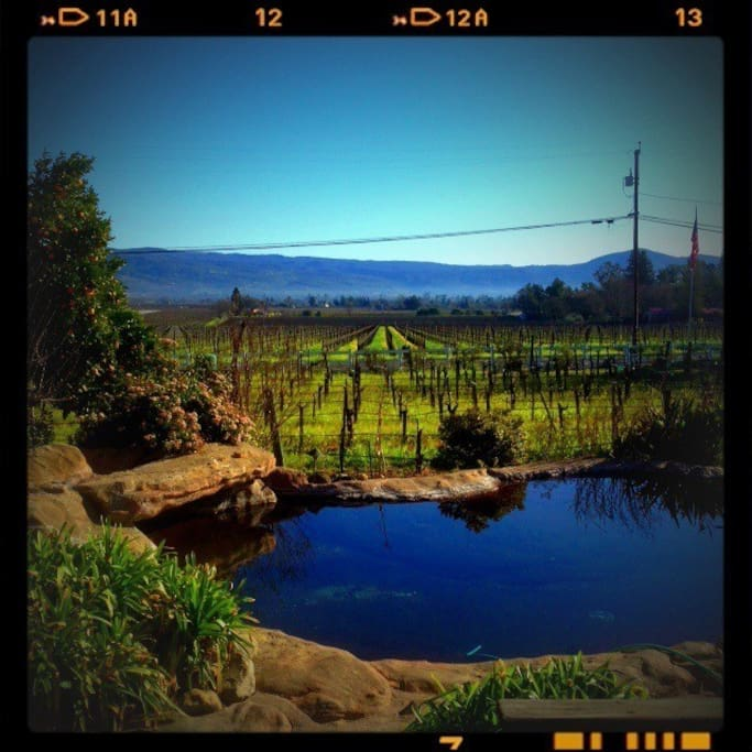 View of the Napa Valley and pool