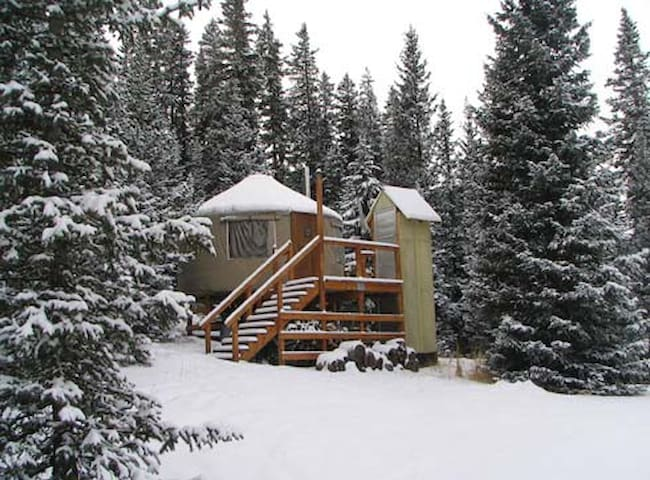 The Lime Creek Yurt - Creede - Yurt