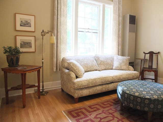 Living room with queen size pull out couch
