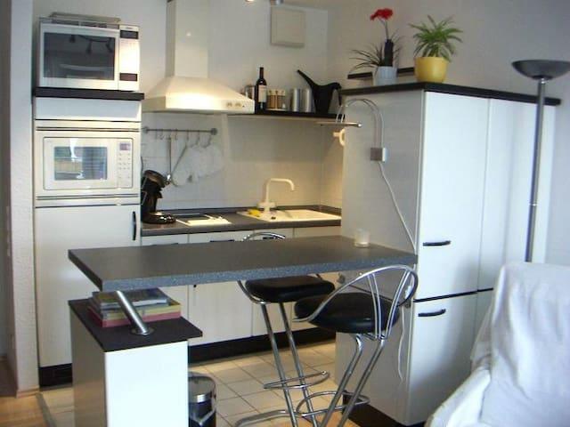 Eine modern ausgestattete Küche