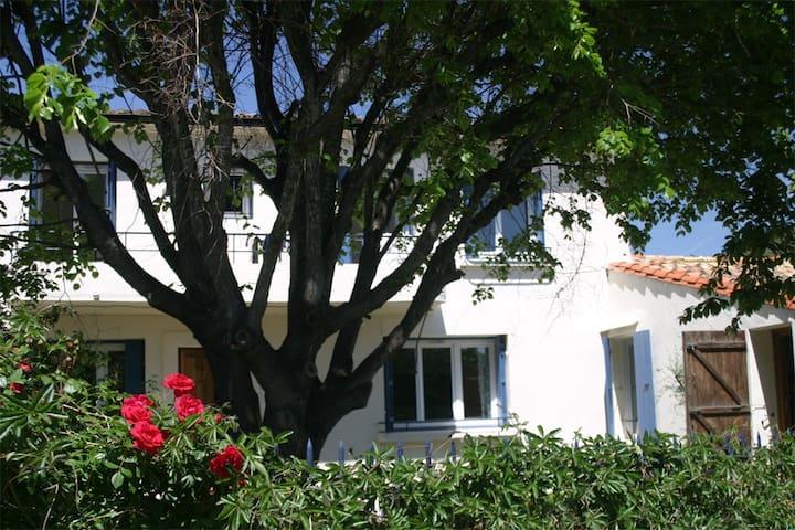 Beautiful spacious village house - Cascastel-des-Corbières
