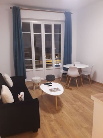 Charmant Appartement de 40m2, proche centre ville