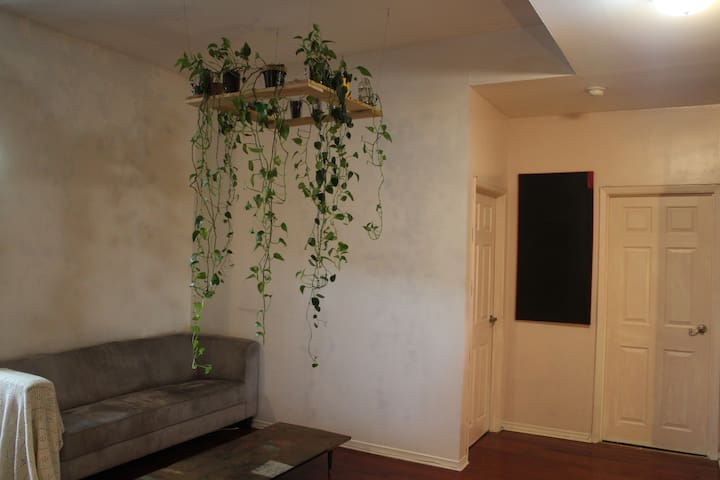 Unique Plant filled  Queen Street Bungalow
