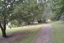 Garden pathway to cottage