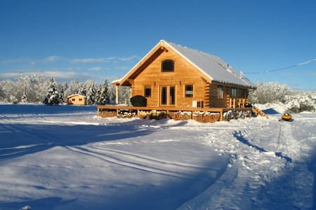 Tagish Cabins B&B and Tours