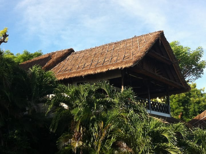 Oceanfront Treehouse.  3 bdrm 3 Bth  2 pools