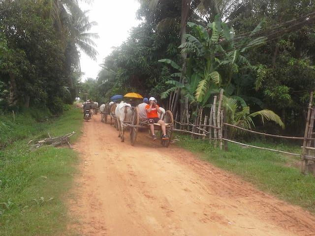 FarmStay siem reap