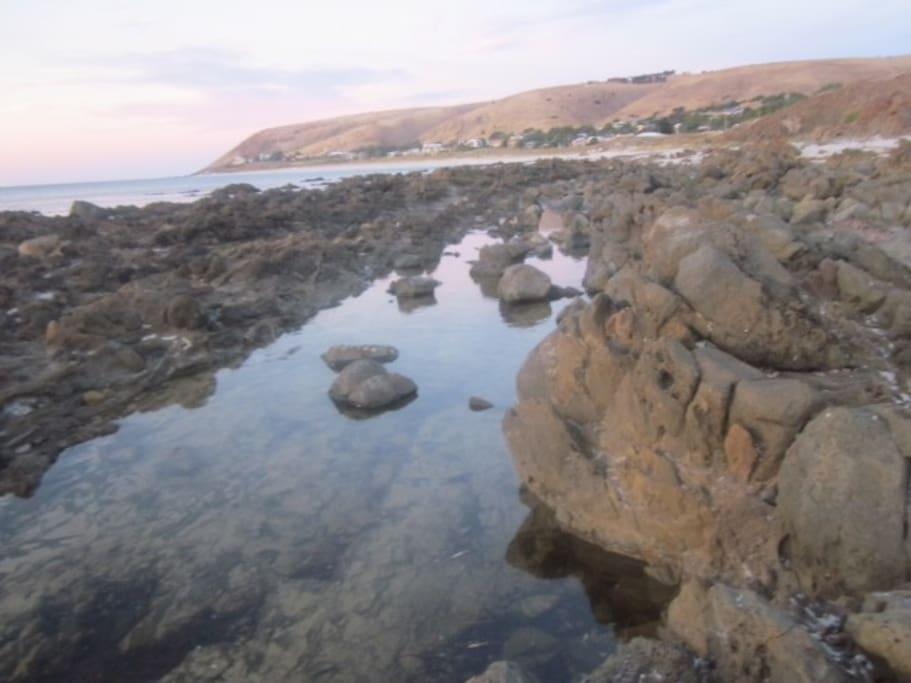 Rock pools to explore