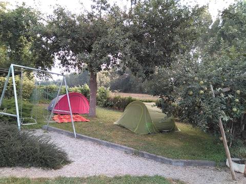 Camping în Melide, Camino de Santiago