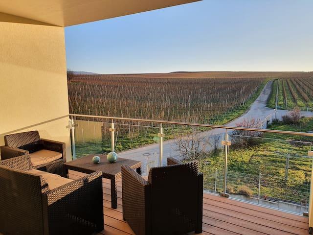 CasaLuna Kaiserstuhl - Apartment mit Mega-Aussicht