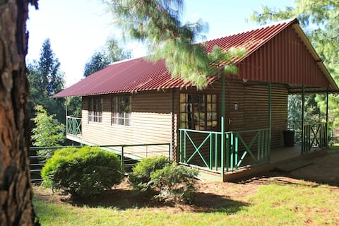 Stoneyhall Farm Log Cabins