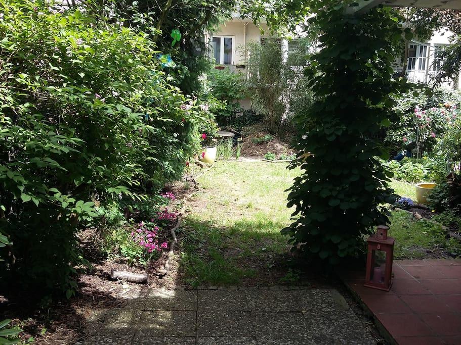 Garten/backyard