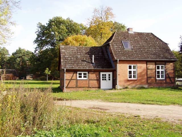 Ferienhaus am Schaalsee - Sterley - House