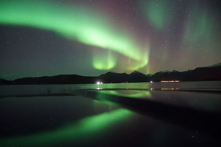 one of my northern lights tour. You are welcome to book a tour.