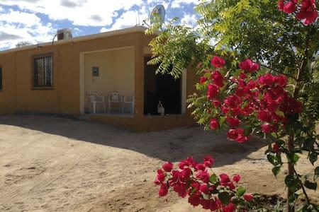 Two Bedroom House.2 Blocks to Beach - La Ventana - Casa