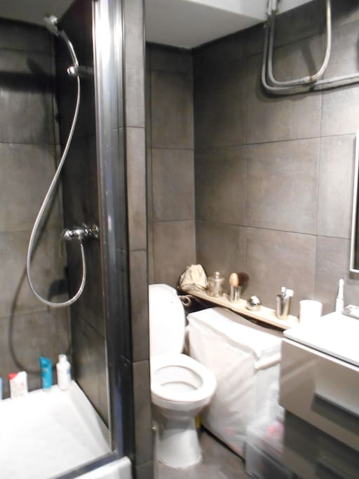 Salle de bain avec douche et wc sani broyeur