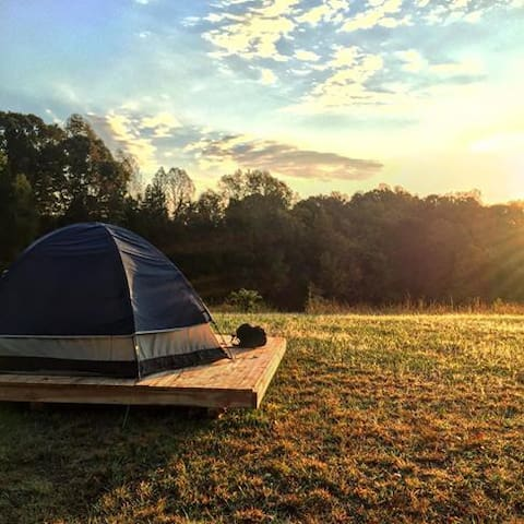 Camping platform at Cane Creek Farm in Saxapahaw - Saxapahaw