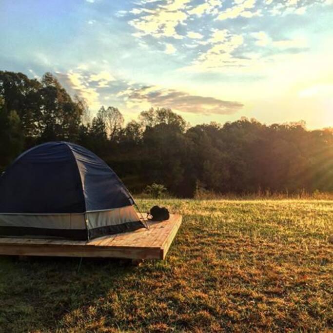 Cedar camping platform