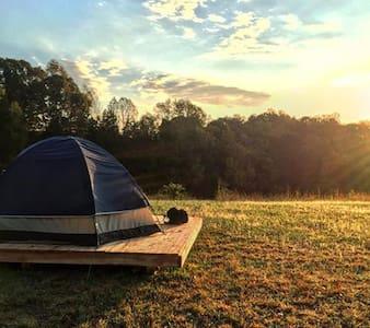 Camping platform at Cane Creek Farm in Saxapahaw - Saxapahaw - テント
