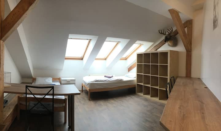 Cosy Room in Attic Apartment at City Centre
