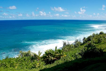 OCEAN FRONT 2b/2ba Amazing Views! Princeville