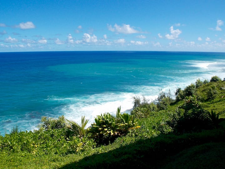 OCEAN FRONT 2b/2ba Amazing Views! Princeville