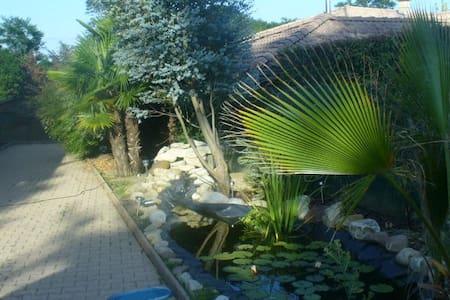 maison campagne - Saint-Paul-de-Varax - Rumah
