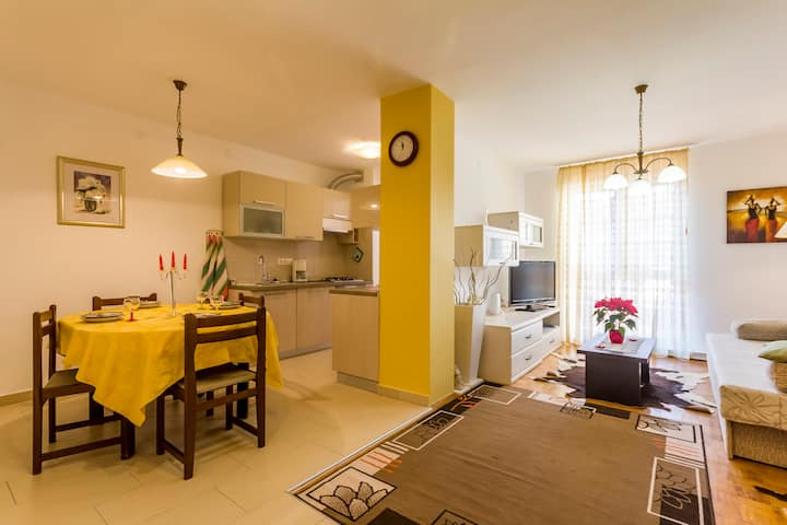 Holiday apartment in Fažana, 350m from the beach